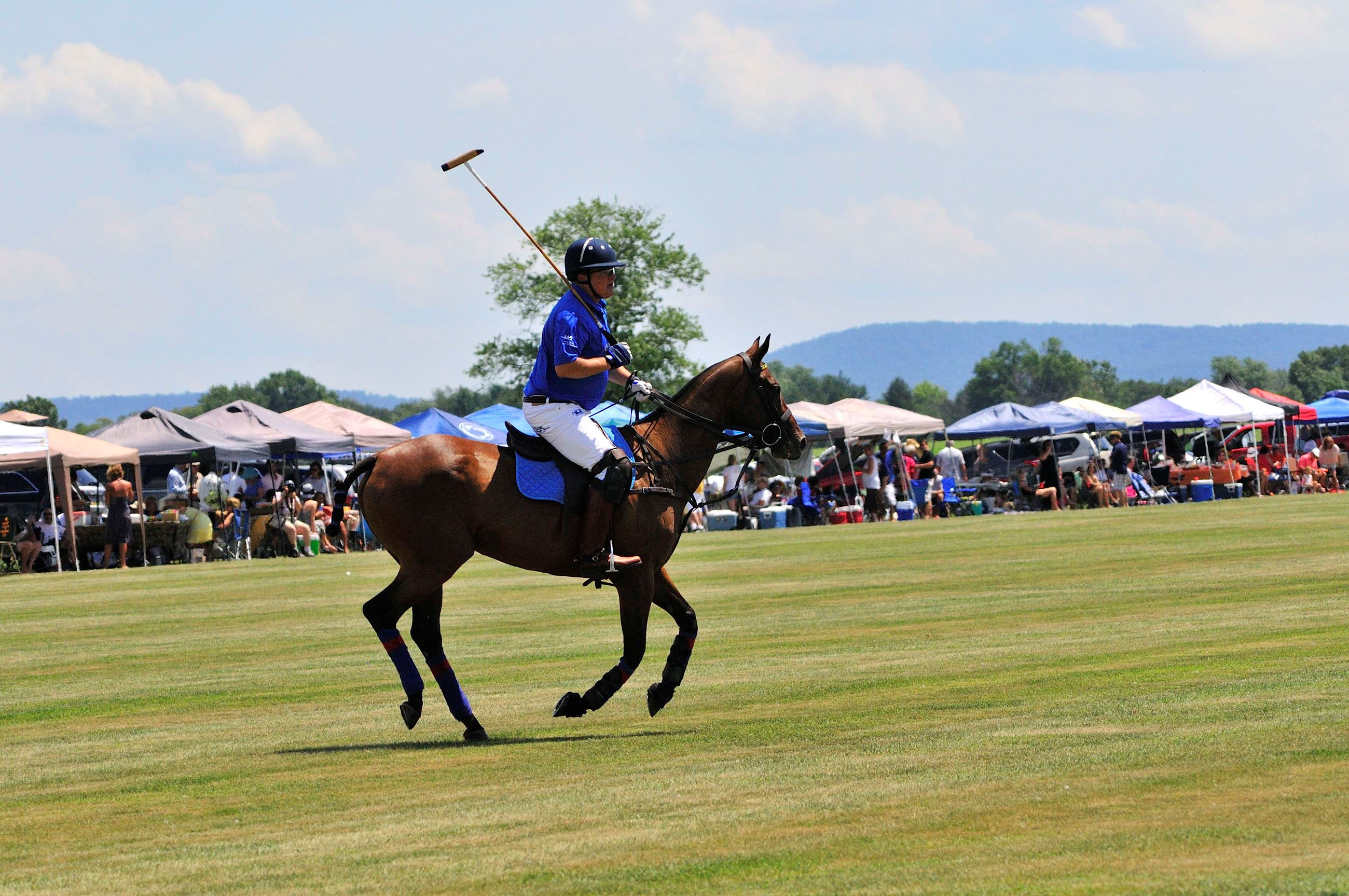 Hempt Farms Polo Match