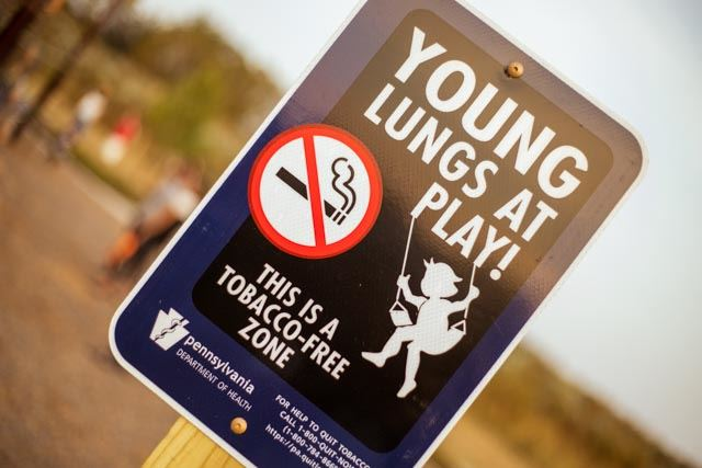 "Picture of ""Young Lungs at Play"" No Smoking Initiative for Park Playgrounds"